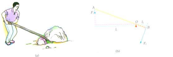 核桃夹 共同特征:在力的作用下,能绕固定点转动的硬棒,叫杠杆