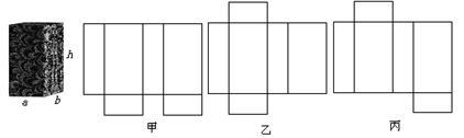 解:(1)图甲表示两个底面的长方形在同一侧,不正确.乙,丙两图正确.图片