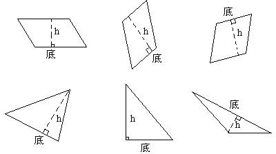 ②画出三角形三条高.图片