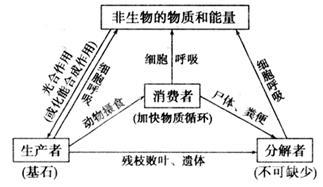 http://res./resources/article/stude初中三个三手抄报图片
