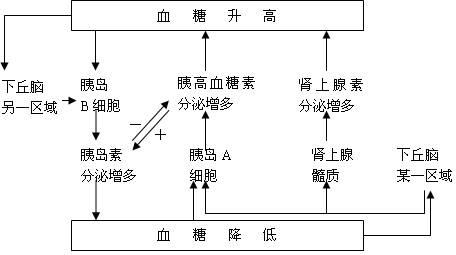 平衡调节电路图