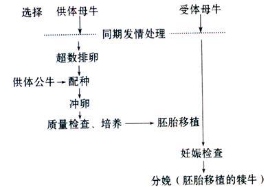 电路 电路图 电子 设计 素材 原理图 393_273