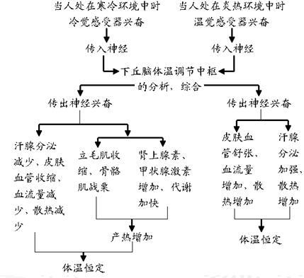电路 电路图 电子 设计 素材 原理图 429_393