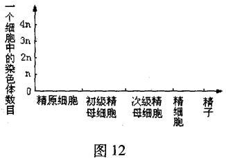 北京101感言2008~2009上生物年级三高中高中班分别学期中学分图片