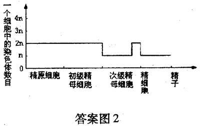 北京101年级2008~2009上中学学期三生物高中几高中有铜川市个图片