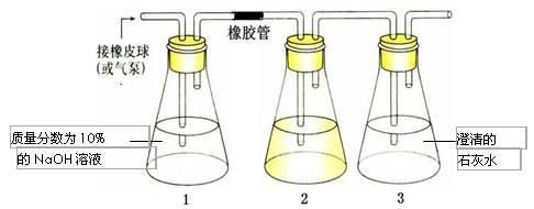 2010年高考生物热点:突破高考实验设计题