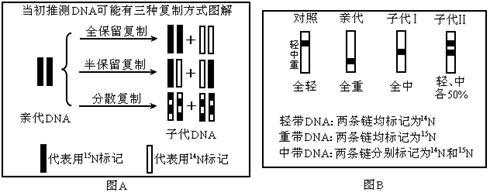 电路 电路图 电子 户型 户型图 平面图 原理图 490_196