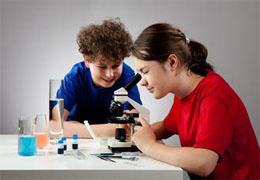 发酵现象 生物教师